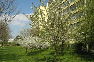 Pflegeheim Senioren-Wohnpark Leipzig - Am Kirschberg Leipzig