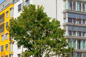 Pflegeheim Vitanas Senioren Centrum Am Hainbach Offenbach/Main