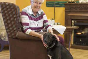 Pflegeheim Seniorenresidenz Amandus Cuxhaven